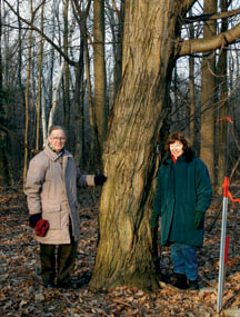 """/>Don York (left), chair of the Manse Valley Community Association, and his wife Sharon (right)"""" hspace=""""50″></p> <div align="""