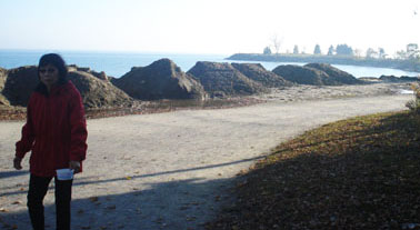 A proposal of put wind farms off the shores of Scarborough Bluffs has left some people concerned about the negative visual impact.