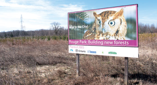 'Time has come' for Rouge national park