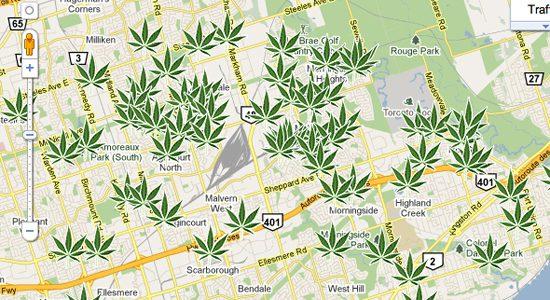local drug bust pounds of recent marijuana drug bust dmx chainz three