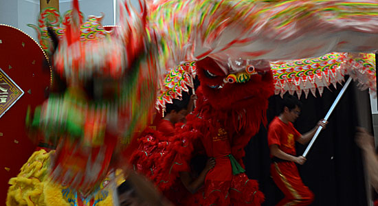 Year of the Dragon looks bright for Scarborough lion