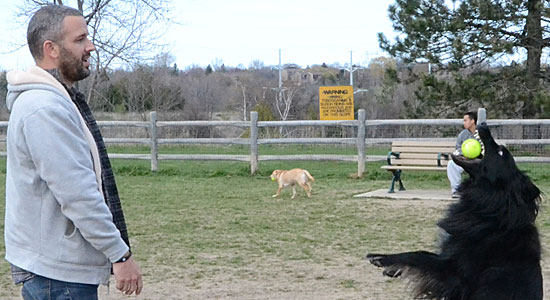 Off-leash off to great start